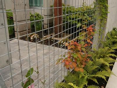 Stainless Steel Welded Mesh Support for Plant & Flower